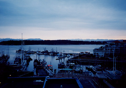 Good Morning Nanaimo #5